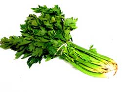 Celery with leaves on
